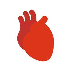 Heart. The human heart. Health. Vector illustration. EPS 10
