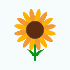Sunflower with green leaves in flat style isolated on white background. Vector Illustration.