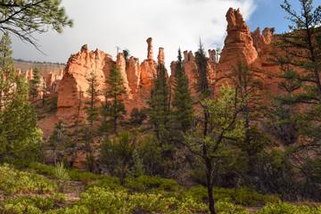 Amazing Giant Hoods in Bryce Canyon