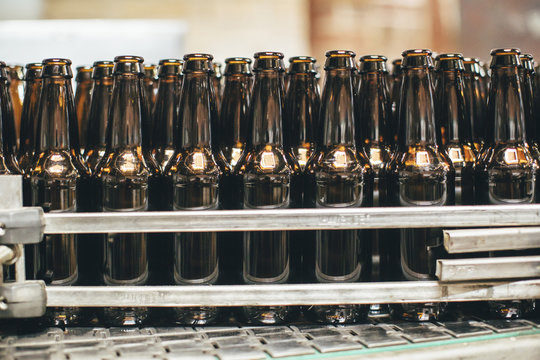 Beer bottles in row on machinery at brewery