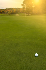 Golf Ball on the Green with Autumn Sunset