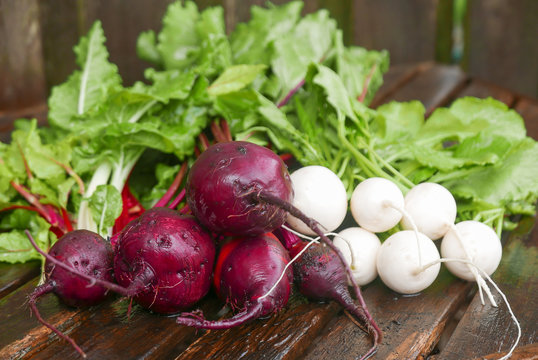 Red beets and white turnips with greens  on an old wooden table