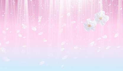 Wall Mural - 桜の背景(薄いピンクとブルーのイメージ)