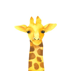 Giraffe cartoon watercolor isolated on white background . Animal hand drawn character painting.