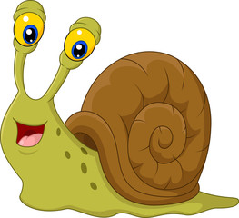 Cute snail cartoon isolated on white background