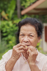 Old woman eating longkong fruit