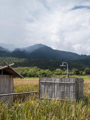landscape  photography : Landscapes of rice fields Asia and lifestyle farmers