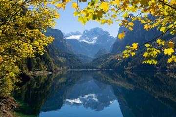 Yellow autumn trees on the shore of lake in Austrian Alps