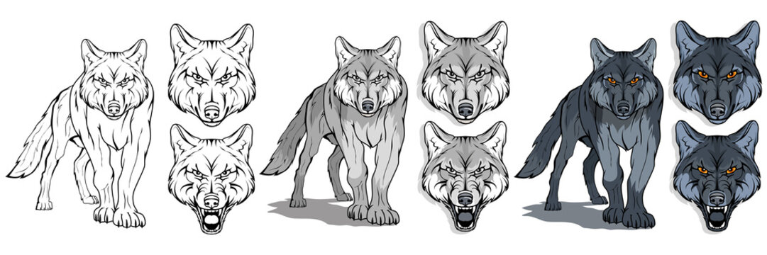 wolf, isolated on white background, colour illustration, suitable as logo or team mascot, dangerous forest predator, wolf's head, wild animal, gray wolf in full growth, vector graphics to design