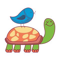 Bird on turtle