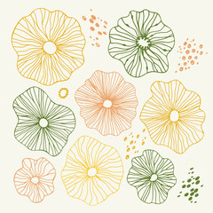 Hand-Drawn Sketchy Doodle Design Elements with Flowers, circles. Natural Colors Abstract Vector Illustration Background.