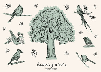 Vector illustration. Pen style sketch objects. Birds on branches. Leaves and tree.