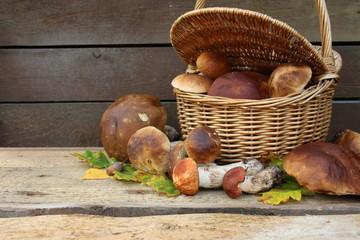 Obraz Kosz pełen świeżo zebranych grzybów, borowiki i czerwone koźlarze na drewnianym tle - fototapety do salonu