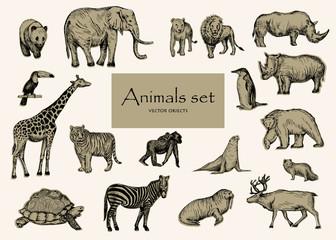 Vector hand drawn sketched animal set.