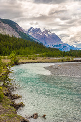 Wall Mural - View at the Coleman creek of Banff National Park in Canadian Rocky Mountains
