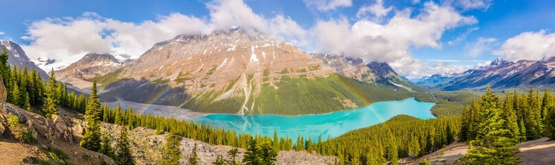 Wall Mural - Panoramic view at the Peyto lake with rainbow from Bow Summit in Banff National Park - Canadian Rocky Mountains