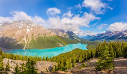 Wall Mural - View at the Peyto lake from Bow Summit in Banff National Park - Canadian Rocky Mountains