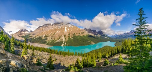 Wall Mural - Panoramic view at the Peyto lake from Bow Summit in Banff National Park - Canada
