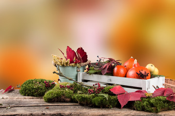 Colored leaves and pumpkin on wooden table. Autumn concept. Mix flowers on board with free space for text
