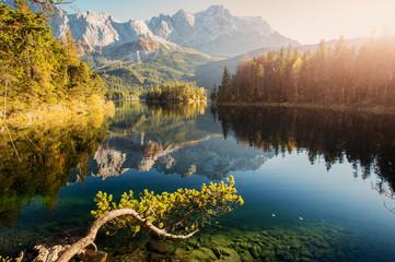 Morning Sunny Landscape