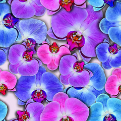 Seamless background. Orchids. Tropical flowers.Stylization: watercolor.