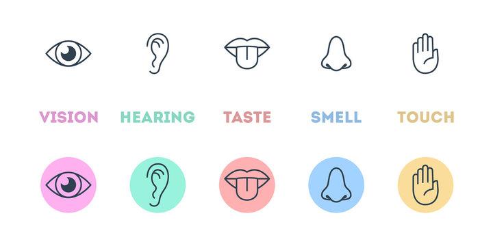 Five types of human sense concept illustration