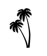 Palm Tree Leaves Silhouette Vector Illustration