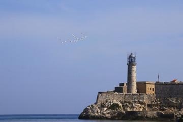 Havana, Seagulls, Castillo de los Tres Reyes del Morro