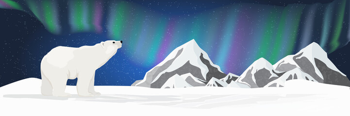 A big white polar bear looks up at the sky. Northern lights over the snow-covered plain. Night starry sky. Northern landscape