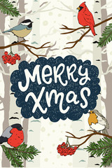 Merry Xmas hand lettering greeting card