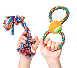 Hand holding Dog toy - pet accessories for games, isolated on white background with copy space