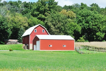Red Barn and Shed