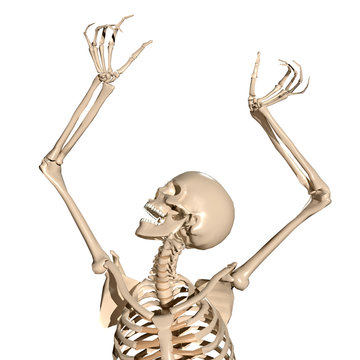Spooky 3d human skeleton screaming
