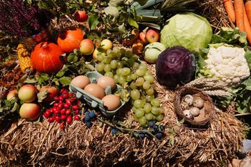 Gesundes Obst und Gemüse
