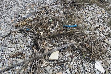 Trash at the ocean beach horizontal