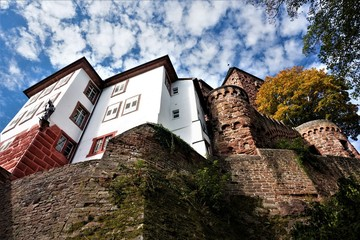 Fototapeten Schloss Worms eye view on Zwingenberg Castle in Baden-Wurttemberg