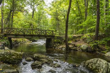 Little wood bridge on the stream