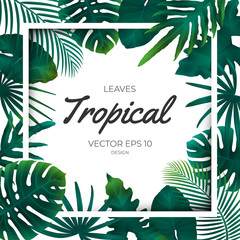 Summer tropical green palm leaves and jungle plants. Cover design template background for wedding card, advertise spa, web site.