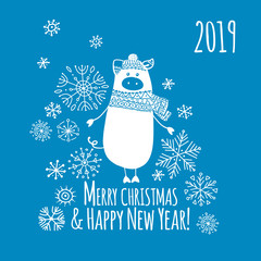 Christmas card with funny pig, symbol of 2019 year for your design