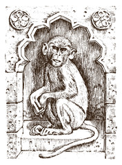 Cute monkey or vintage primate. Hand drawn, engraved wild animal. zoology african symbol. vector illustration. poster for book or web site.