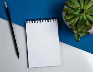 Blank school notebook with a black pencil and a plant on a blue white background, top view