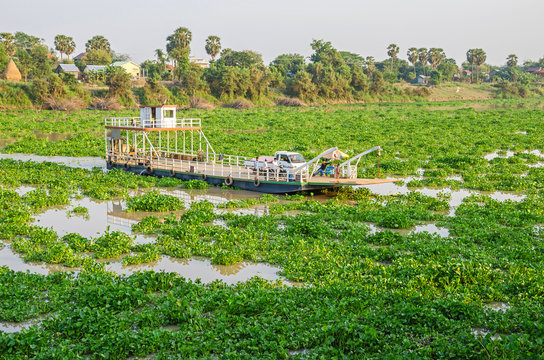 Tonle Sap Lake covered with invasive water hyacinth and a ferry boat