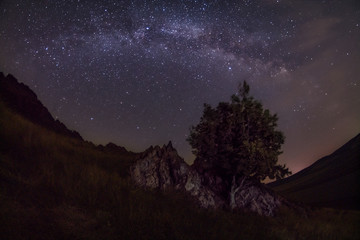 Milky Way galaxy constellation seen in the dark near a sharp rock and a tree in the foreground