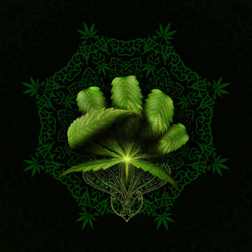 3D rendering idea of a cannabis leaf making a fist on a mandala.