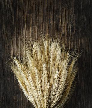 Sheaf of wheat ears on dark wooden background.