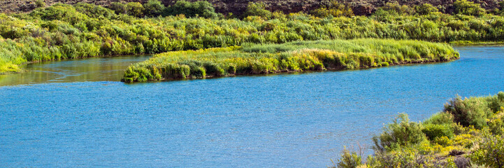 Panorama of the Green River as it passes wetland grasses in remote Browns Park National Wildlife Refuge in northwestern Colorado