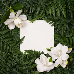 Poster de jardin Fleur Frame made of white flowers and green leaves with paper mock up . Summer tropical background, Flat lay. Nature concept.