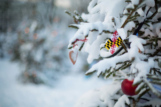 Maryland state flag. Christmas background outdoor. Christmas tree covered with snow and decorations and Maryland flag.  New Year / Christmas holiday greeting card.