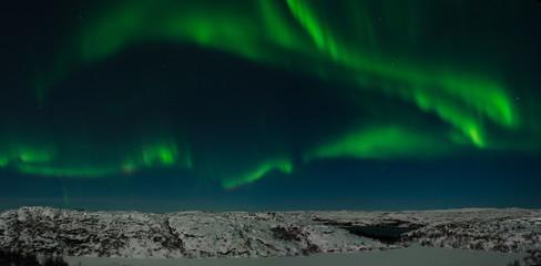 Aurora, northern lights, night, tundra in winter.