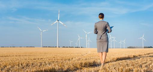 Investor in saubere Energie schaut sich ihre Windräder an